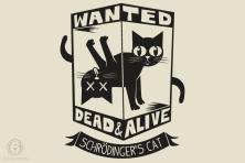 sixdollar_schrodingers-cat-fla.full